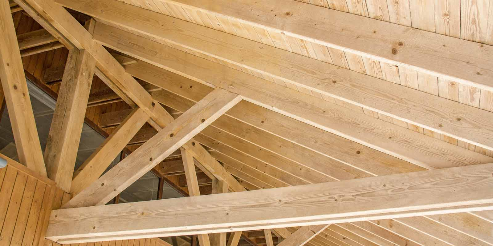 tetti in legno lugano bellinzona